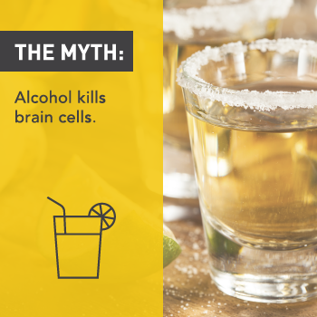 Myths About Alcohol: Alcohol Kills Brain Cells