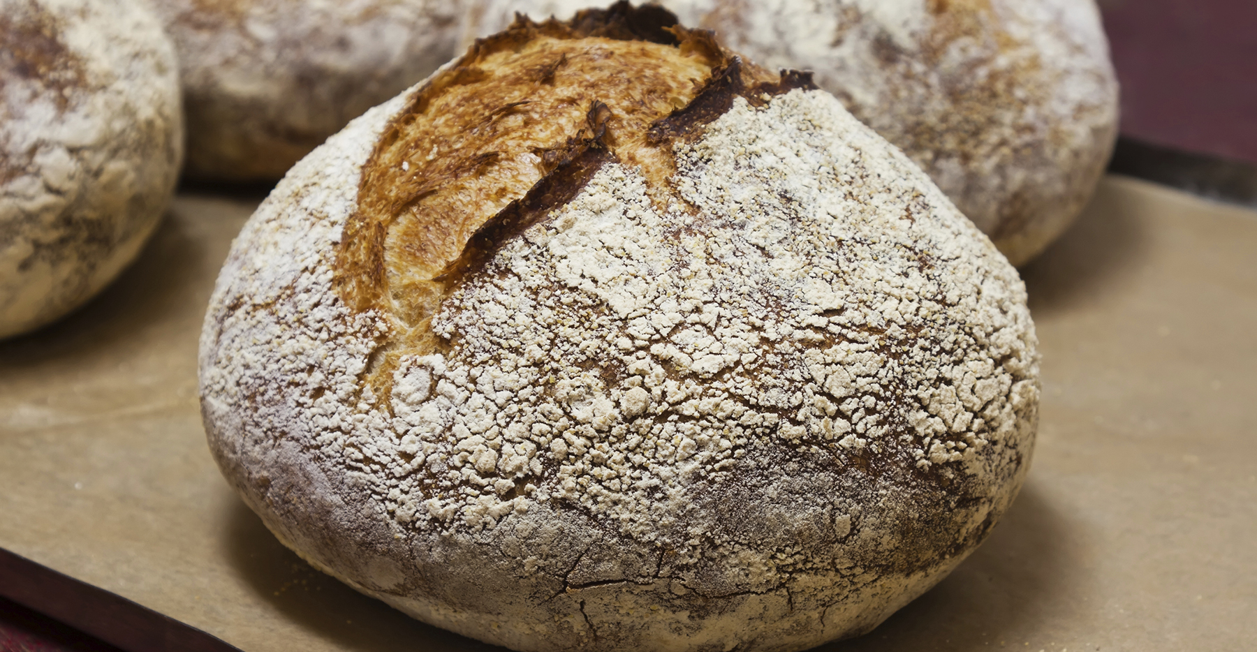 Is Any Bread Actually Healthy A Must Read Before You Buy Your Next Loaf