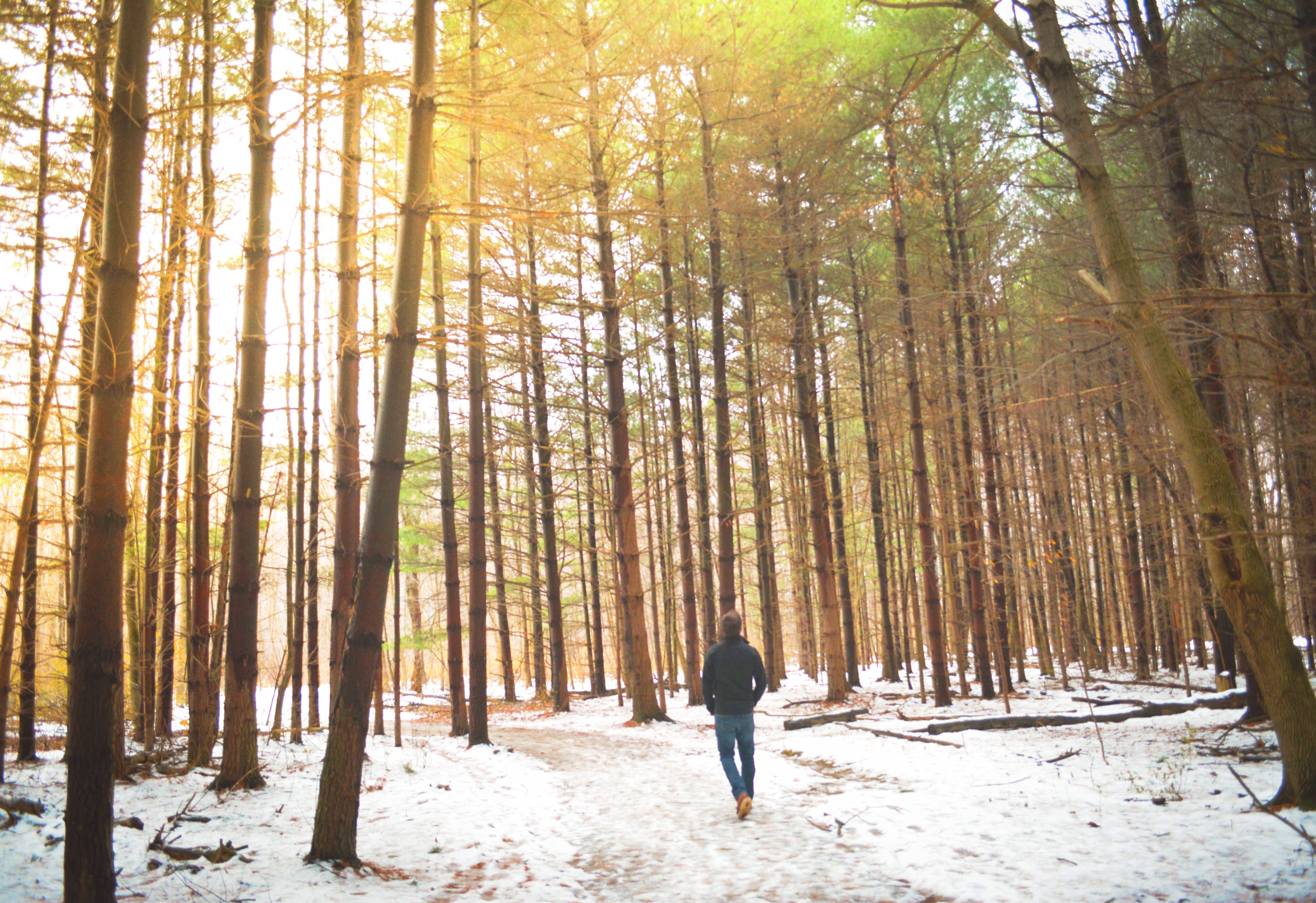 ways to stay energized during the holidays greatist