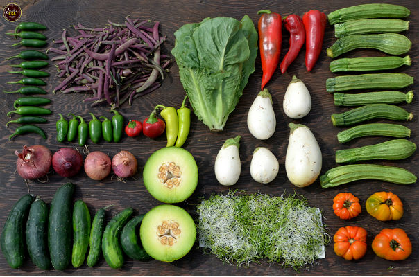 CSA vegetable tips