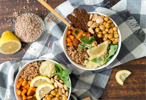 Protein Meals Feature