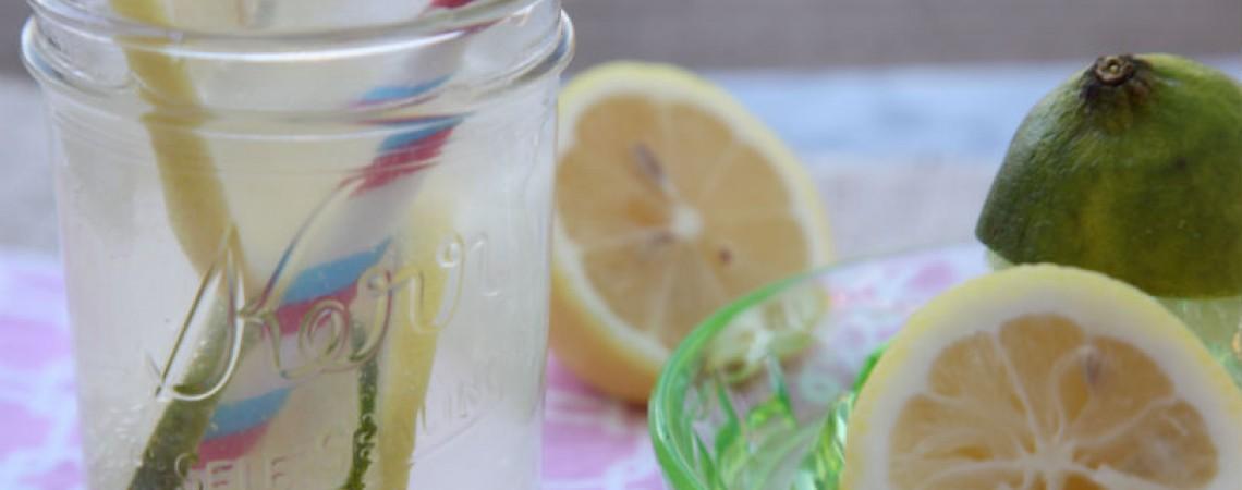 Low-Sugar Lemon Lime Soda