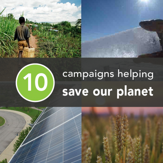 10 Campaigns Helping Save Our Planet