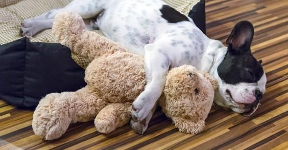 27 Easy Ways to Sleep Better Tonight