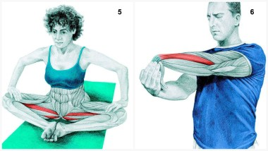 Butterfly Stretch and Forearm Extensor Stretch
