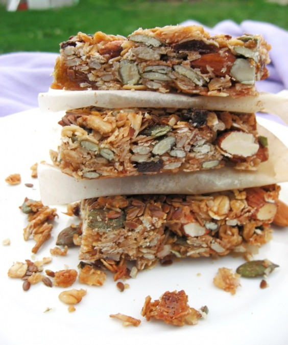 Crunchy Fruit and Nut Bars