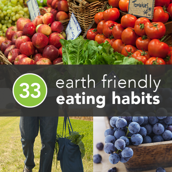 essays on healthy eating habits