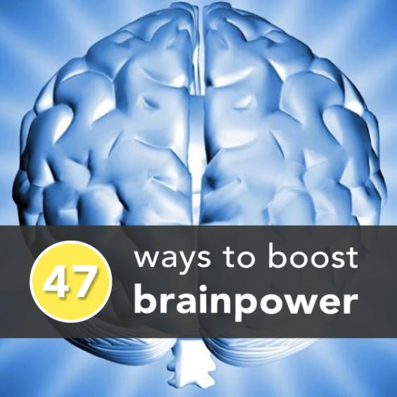 Brainpower Banner