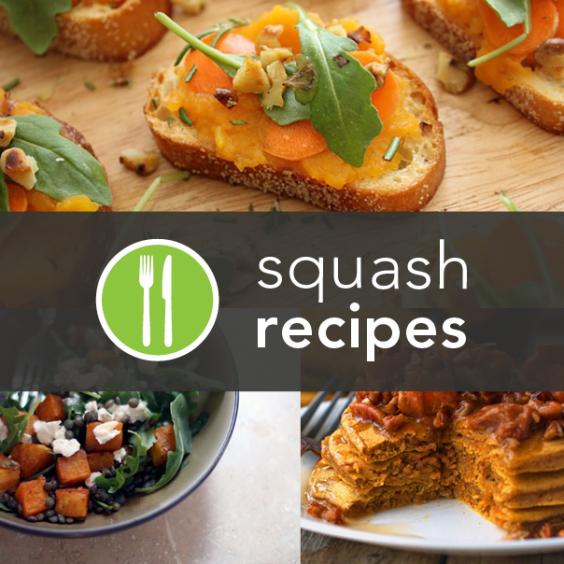 5 Healthy Squash Recipes