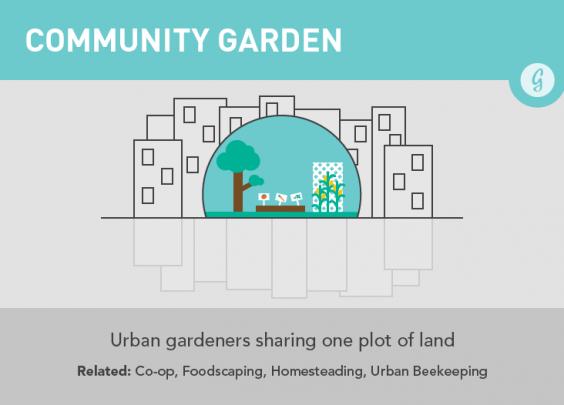 Community Garden Trends