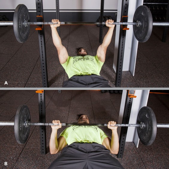 Single Arm Dumbell Bench Press: Barbell Workouts: The 8-Week Program For Beginners