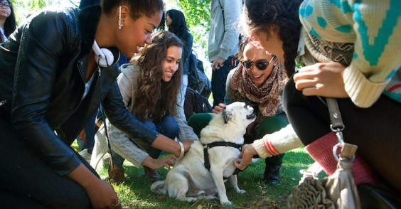 25 Healthiest Colleges: Brown University