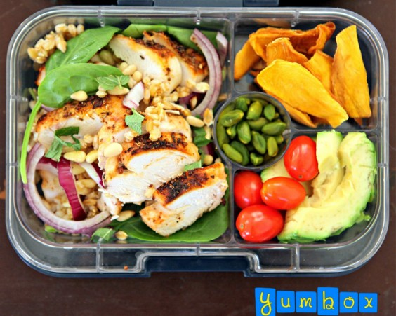 Cold chicken recipes for lunch