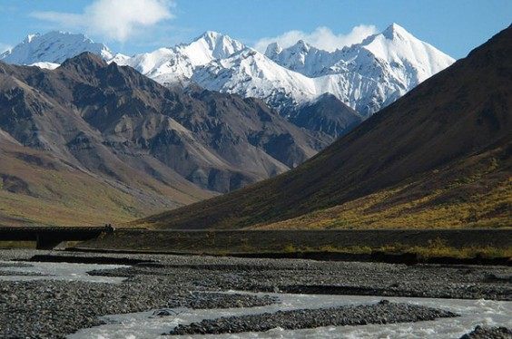 denali national park essay