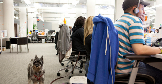 Healthiest Companies To Work For: Eventbrite