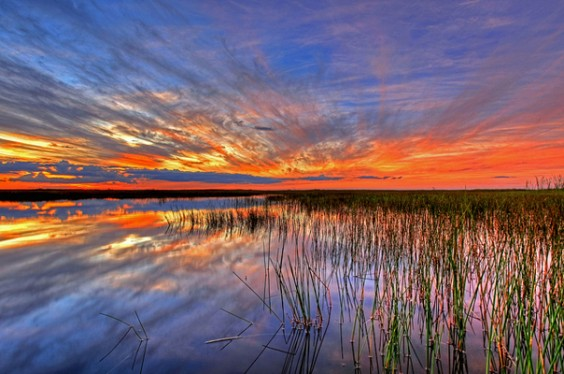 21. Everglades National Park, Florida