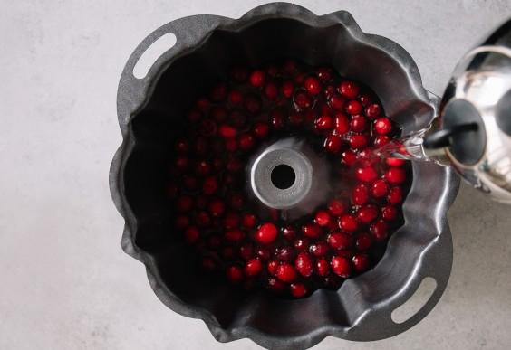cranberry ice block: step 1