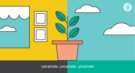 Everything You Need to Know Before Starting a Garden: Location, Location, Location