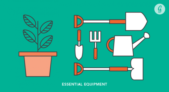 Everything You Need to Know Before Starting a Garden: Essential Equipment