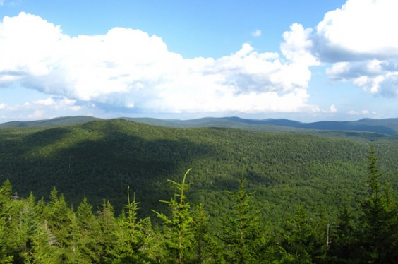 Green Mountains National Forest