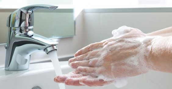 5. Wash your hands.