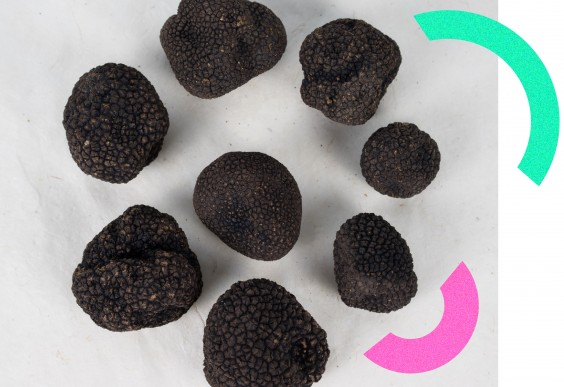 Fresh Burgundy Truffles