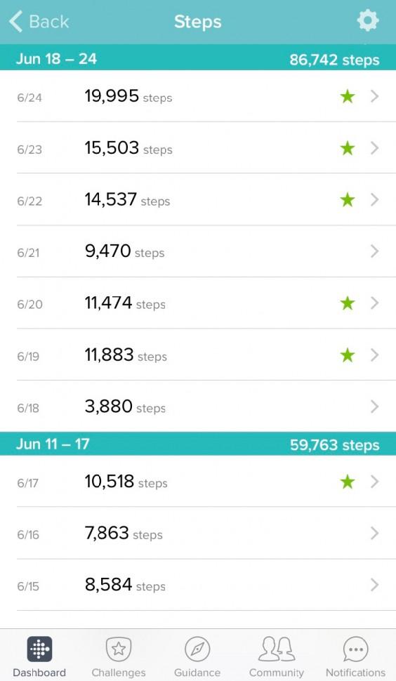 Fitbit Steps