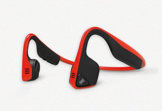 Trex Titanium Wireless Headphones