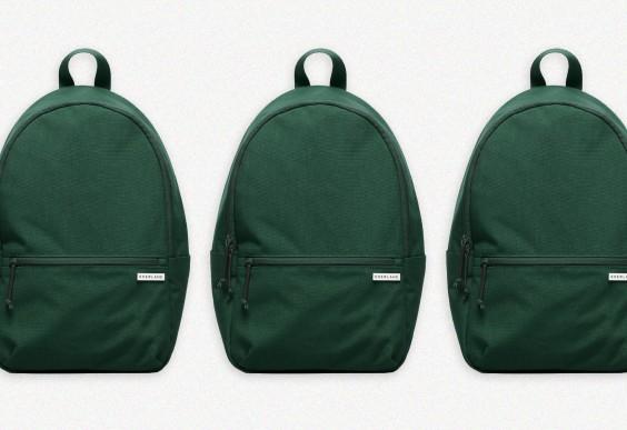 Everlane Nylon Zip Backpack