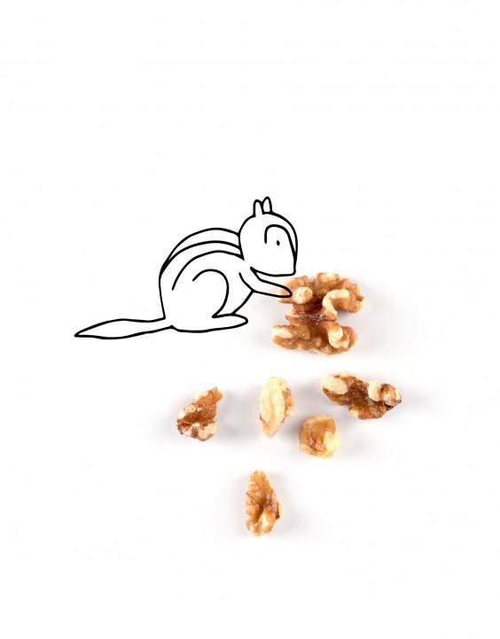 Healthy Fats - Walnuts