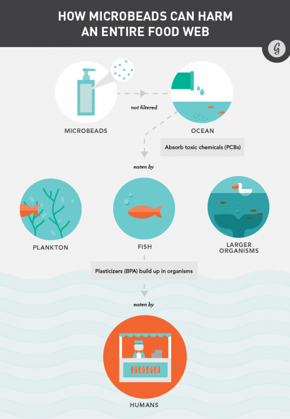How Microbeads in Beauty Products Can Harm an Entire Food Chain