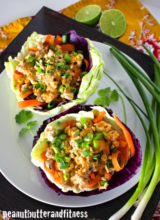 1 Protein Style Thai Turkey Wraps