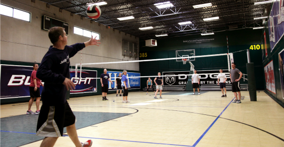 Pro Athlete Employee Volleyball Game