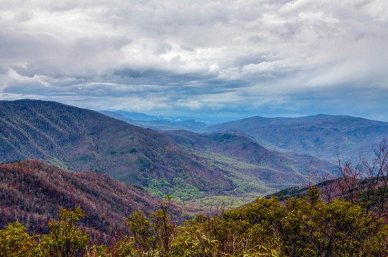 24. Great Smoky Mountains National Park, Tennessee