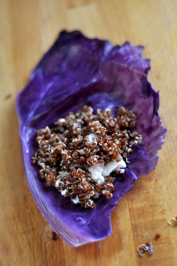 Red Cabbage Wraps with Quinoa and Goat Cheese