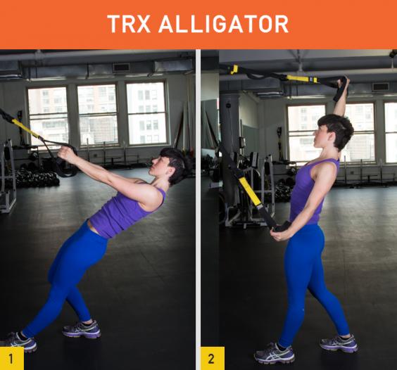 TRX Alligator