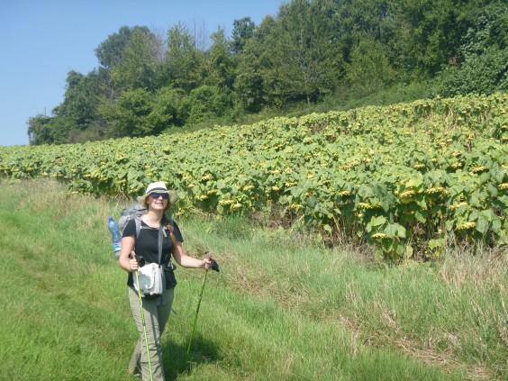 The author hiking through Tuscany