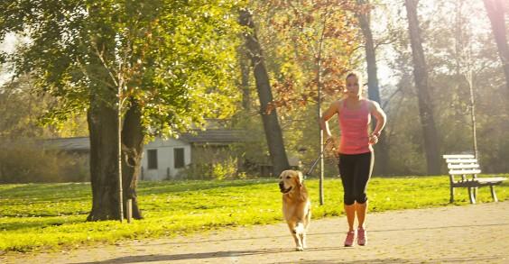Morning Workout Tip