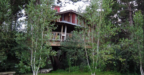 Epic Systems Treehouse