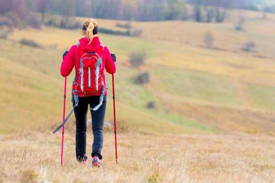 Hiking: poles