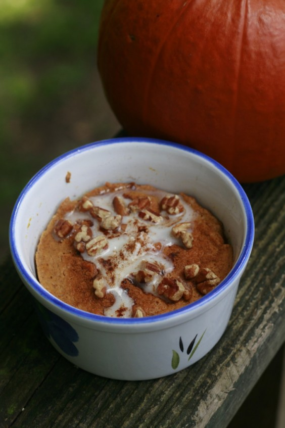Mug Meals: 2 Minute Pumpkin Pie