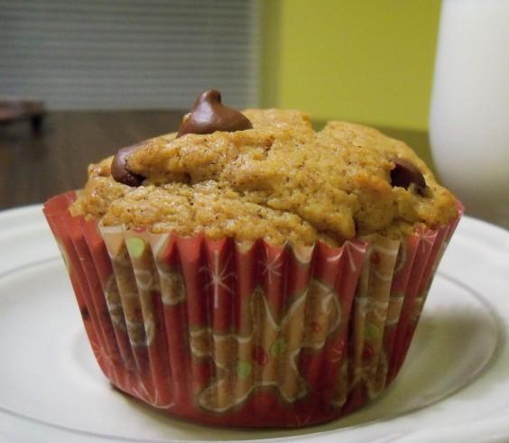Chocolate Chip-Pumpkin Muffin
