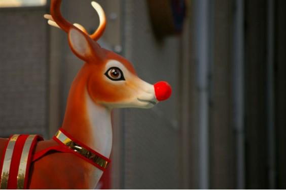 reindeer santa christmas facts