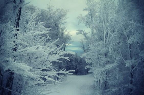 white christmas snow