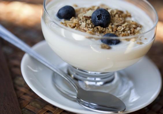 Under Dollar Foods: Yogurt
