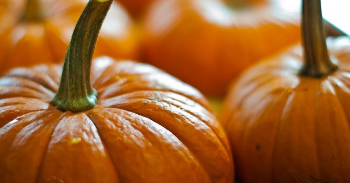 pumpkin the superfood s health benefits greatist