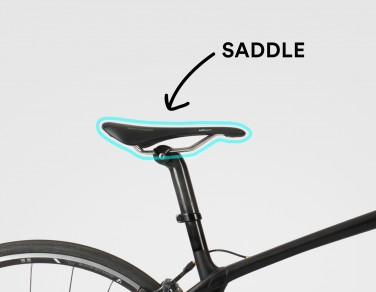 Cycling Lingo: Saddle