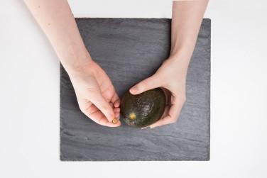 Avocado stem