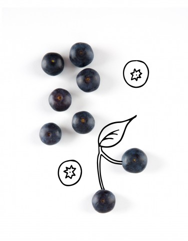 What Are Antioxidants, Really?