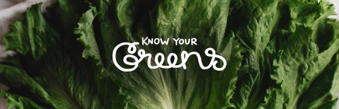 Guide to Greens Header